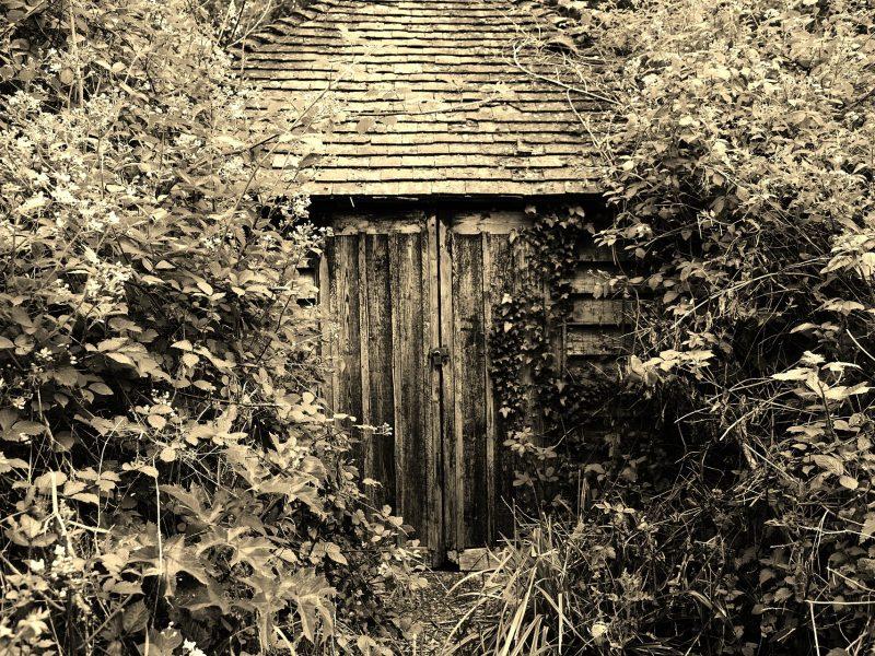 secret-garden-2413804_1920